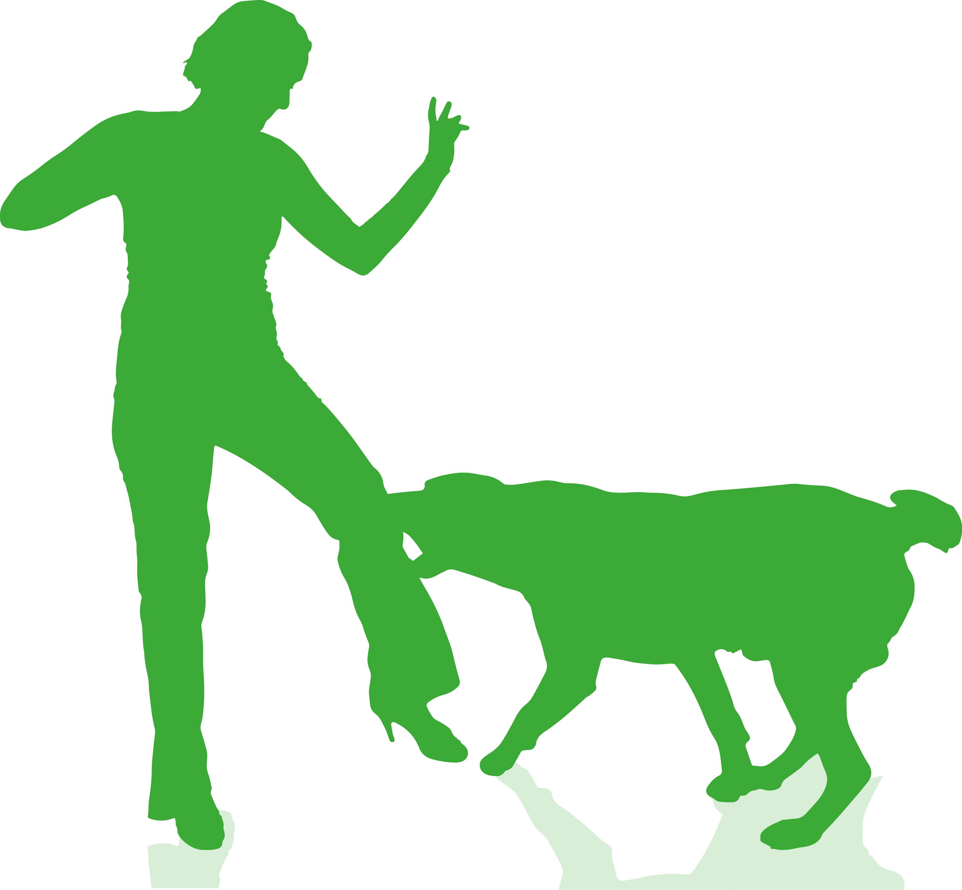 Nationwide Insurance Dog Bite Policy