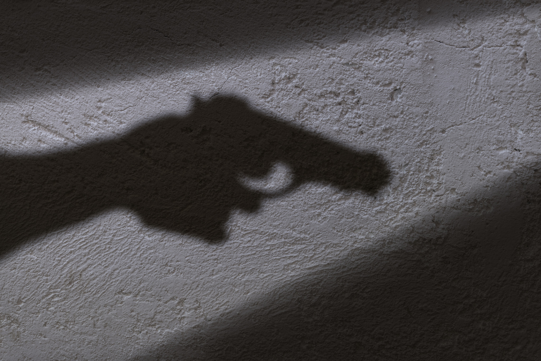 firearm and concealed weapon coverage