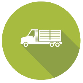 Commercial-Auto-Truck