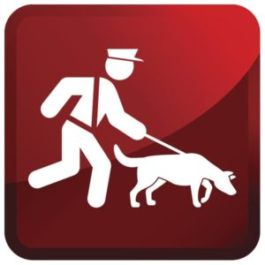 Insurance For Working Dogs